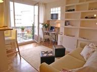 Как выглядит французский балкон внутри помещения